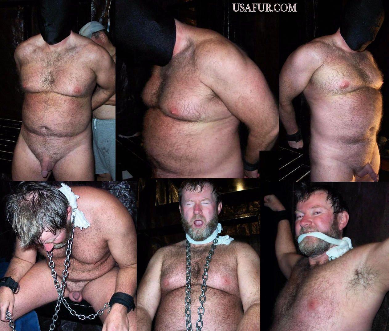 best of Bear bondage Daddy
